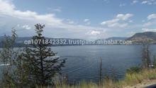 Lakeshore Property at Okanagan Lake in Canada