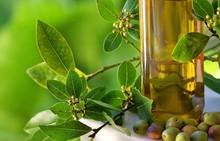 Refined Sunflower Oil   Soybean Oil   Corn Oil   Extra Virgin Olive Oil, Avocado Oil