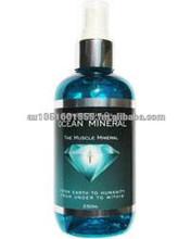 Ocean Minerals