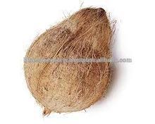 Fresh coconuts from Tuticorin port