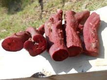 Nero naturale coralli, coralli rossi, coralli bianchi per la vendita