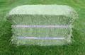 vendita calda di alta qualità fieno di erba medica