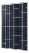 Q CELLS Q.PRO-G3 245 245W Poly SLV WHT Solar Panel