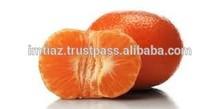 New Year 2015 Special Offer - Mandarin Easypeeler Kinnow Citrus fruit