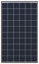 Q CELLS Q.PRO BFR-G3 250 250W Poly BLK WHT Solar Panel
