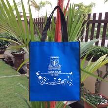 Non Woven Bags /Shopping Bag