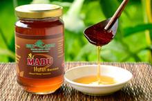 jungle wild natural bio honey
