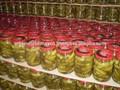 Encurtidos de pepino en vinagre _ bebé de pepino en frasco de vidrio, en tambores, can_ en el mejor precio