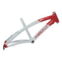 Bicycle Frame-9004