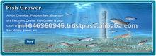 Aquaculture Fish Grower