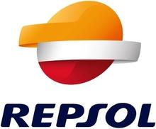 REPSOL REPARA PINCHAZOS SPARY