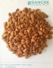 Semen Persicae/Peach Seed P.E/Prunus Persica Kernel Extract