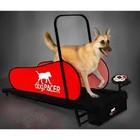 DogPacer Dog Treadmill (LF 3.1)