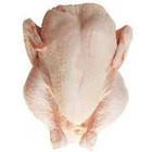 Halal Frozen Brazillian Whole Chicken For Bulk Sales