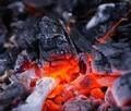 Bajo contenido de cenizas contenido de madera dura de carbón de alta Calorific valor