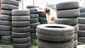 usado pneu de carro