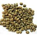 Massa verde caffè/robusta cofee/estratto di caffè verde