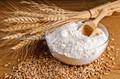 trigo farinha de 50kg