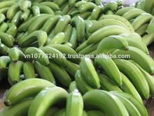 Fresh Viet Nam sweet cavendish Banana leaves for sale