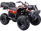 Coolster 150cc DX2-Utility 4 Wheeler Quad