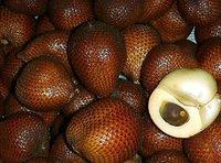 Snake Fruit / Salak / Salacca Zalacca