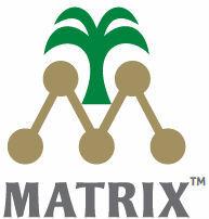 Matrix Peanut Flavours Oil ( Essence )