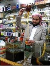 Yemeni honey with strong antibiotics & antioxidant strenghts