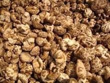 healthy food dried shiitake mushroom