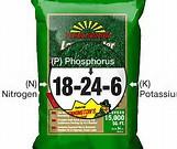 100% Best Quality Soluble NPK Fertilizer for sale