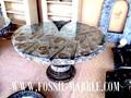 mesa con marrón natural fossis amonitas y orthocerases