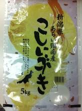Koshi-Ibuki Japanese rice