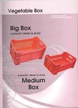 Plastic Fruit/Vegetable Box