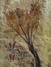 Il Museo Civico di Storia Naturale di Milano.