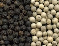 Dried Style And Raw Proccessing White Pepper