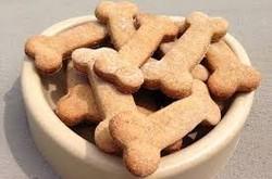 Pet Food (Pet Treat) & Dog Chewing Bone Production Lines