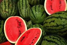 fresh watermelon for sale