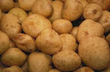 High Quality Potato Price Fresh Potato Importers