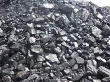 Indonesian Steam Coal, supplying on CIF Term