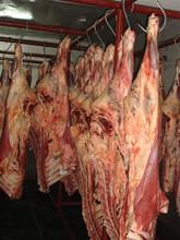 HALAL BEEF AND BUFFALO MEAT