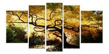 Maple Tree Fantastic Canvas Wall Art Set of 5 Total