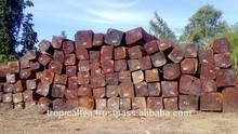 Big size Logs sawn timber Cambodia wood