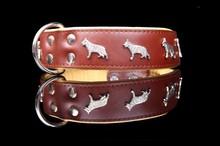 Leather Collar german shepherd dog, halsband