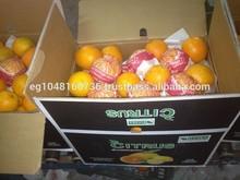 FRESH ORANGE from foodex company