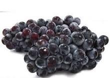 Fresh Dark globe grapes for sale