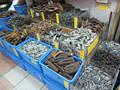 Bajo precio/secos de pepinos de mar/pescado blanco del pezón