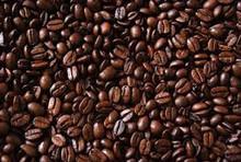 Coffee Beans, Grade A Coffee Beans, Arabica Coffee, Robusta Coffee Beans, Roasted Coffee Beans, Grind Coffee Beans