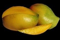 Dashri Mango