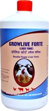Liver & Digestive Tonic