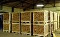Kızılağaç, huş, meşe odun, ahşap, ahşap, fırınlanmış odun 1m-10m