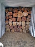 Kosso wood - Rose wood - PTEROCARPUS ERINACEUS Logs - squared logs - Timber - Lumber - Boards